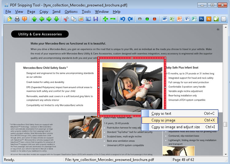 PDF Snipping Tool full screenshot